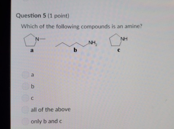 Question 5 (1 point) Which of the following compounds is an amine? NH N- NH2 b a a b all of the above only b and c